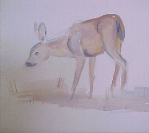 Fawn2 Watercolor