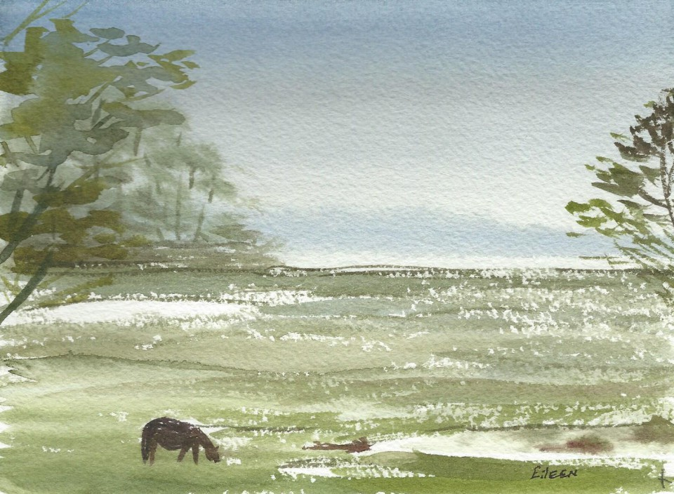 Horse in Chincoteague WC  on paper 5.5 x 7.5